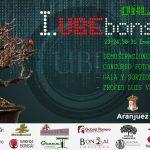 Cartel Primera Convención UBE Bonsai Virtual