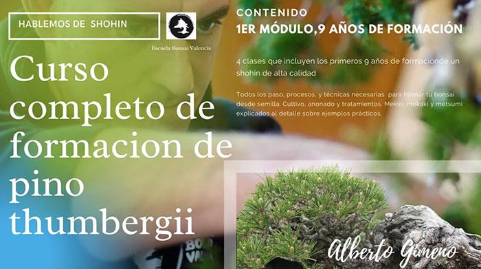 Curso World Bonsái Universitu(WBU): Curso de formación de Pinus thunbergii