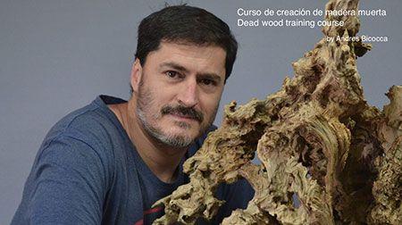 Curso World Bonsái Universitu(WBU): curso completo del trabajo de madera muerta. Módulo 1 de 3