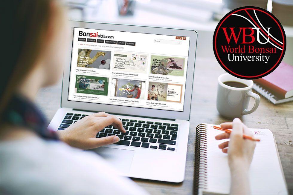 Listado de Cursos World Bonsái University (WBU)