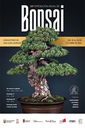 Cartel de la Exposición Asociación Cultural Bonsái Burgos